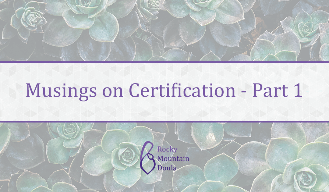 Musings on Doula Certification Pt 1