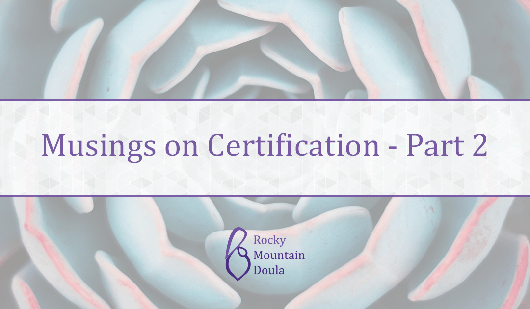 Musings on Doula Certification Pt 2