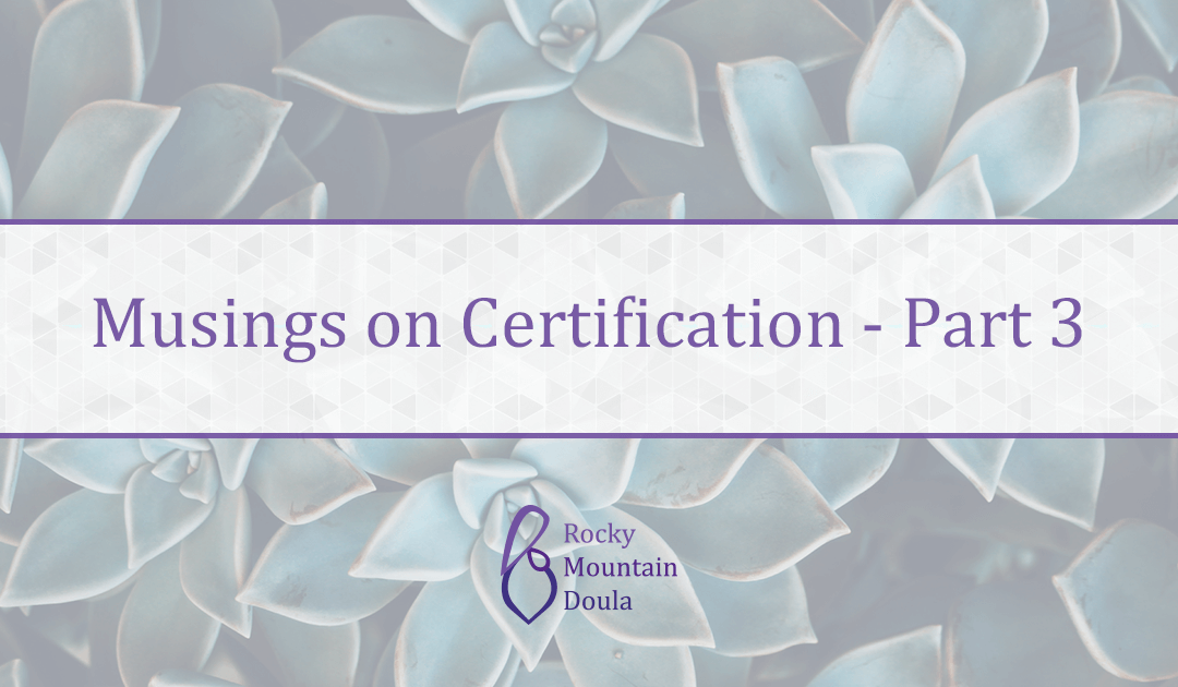 Musings on Doula Certification Pt 3